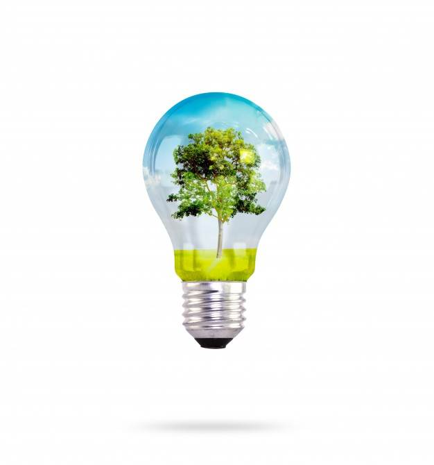 light-bulb-with-tree-inside_1232-2102.jpg (626×670)